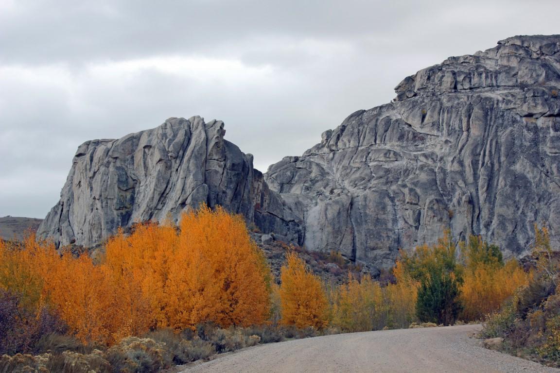 11 Nov Harrison Pass (medium)